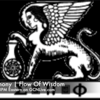 #3 The Boule, Steve Cokely and the Round Table | FLOW OF WISDOM® | SEAN ANTHONY
